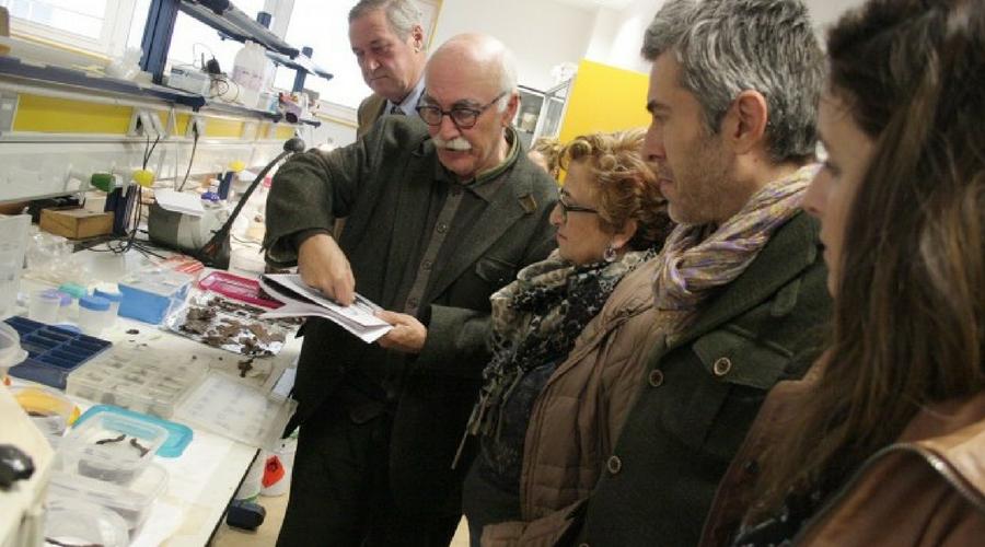 El Instituto de Arqueología de la UJA centrará, este año, su actividad en la Necrópolis de Piquía.