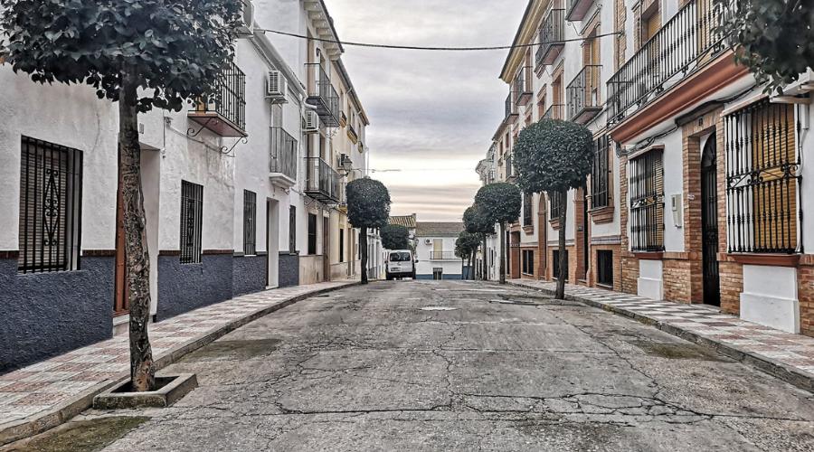 EL AYUNTAMIENTO DE ARJONA INVERTIRÁ 496.292 EUROS EN LA REMODELACIÓN DE CINCO CALLES DE LA LOCALIDAD